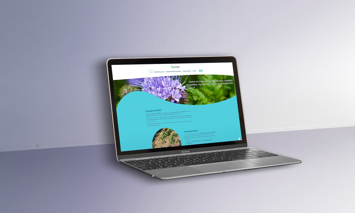 Site web Acoso